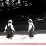 Twins24